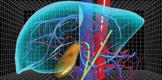 Akciğer Kanseri Cerrahisi (Endo-Bronşiyal) Alanındaki Gelişmeler