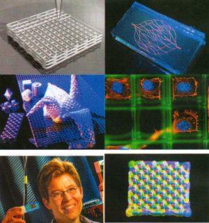 Bio-baskı (Bioprinting) Nedir?